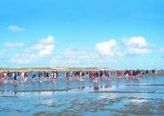 Nordic Walking im Wattenmeer