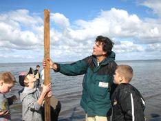 Mit dem Nationalpark-Ranger im wattenmeer (Foto: Landesbetrieb für Küstenschutz, Nationalpark und Meeresschutz / Nationalparkverwaltung)