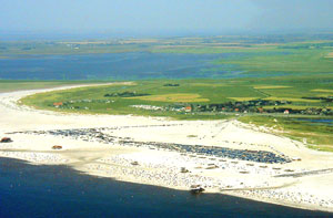 /resources/preview/103/region-nordfriesland/ording-strand.jpg